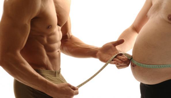 Омега-3 жирные кислоты стимулируют метаболизм в жировой ткани