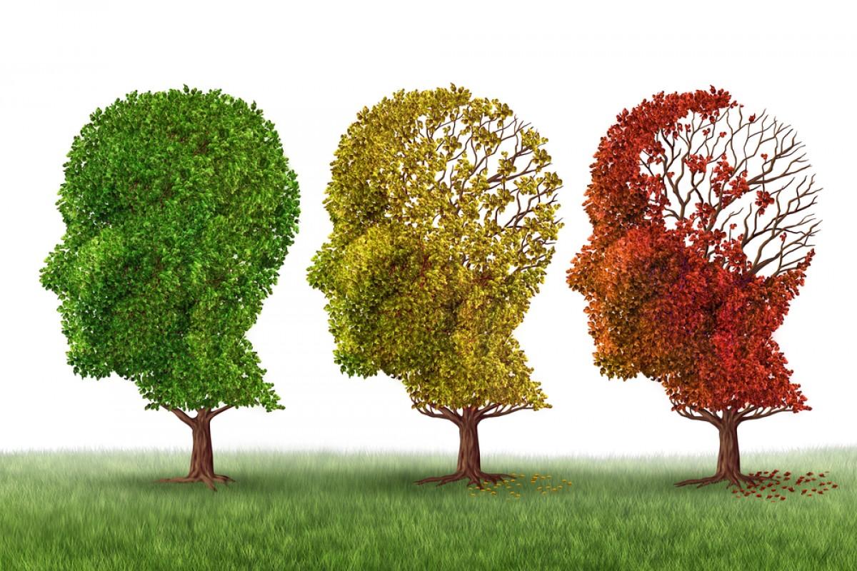 Омега-3 (и витамин D) помогают в удалении триггеров болезни Альцгеймера